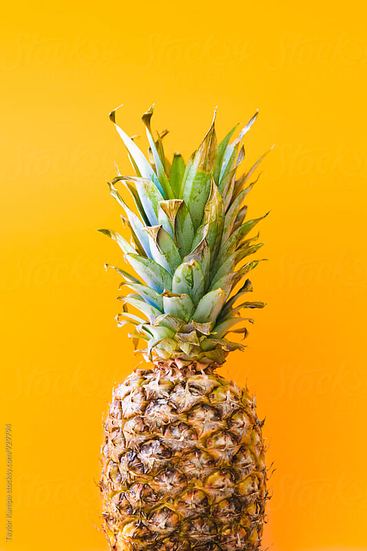 Pineapple  by Taylor Kampa for Stocksy United