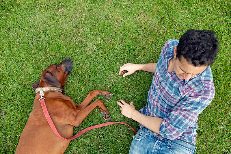 Young man of mixed race lying on the grass with his brown haired dog by Ivo de Bruijn for Stocksy United
