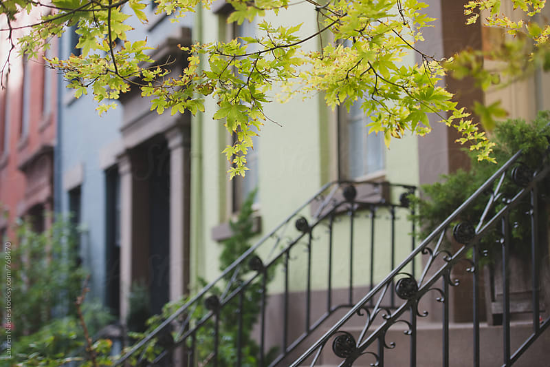 Pretty row of brownstones and greenery by Lauren Naefe for Stocksy United