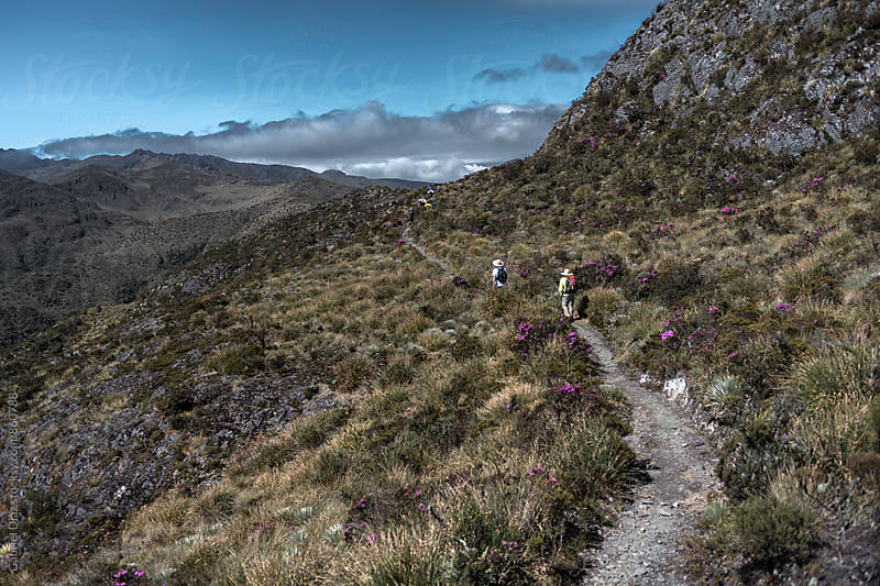 Hiking in South American Andes. Venezuela by Gabriel Diaz for Stocksy United