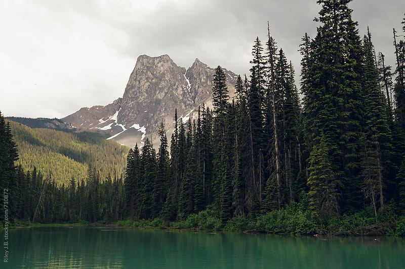 Tall trees line a lake shore with a mountain in the background by Riley Joseph for Stocksy United