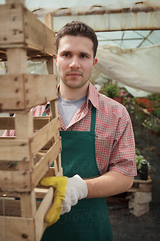Man Carrying Crates at a Hothouse by Lumina for Stocksy United