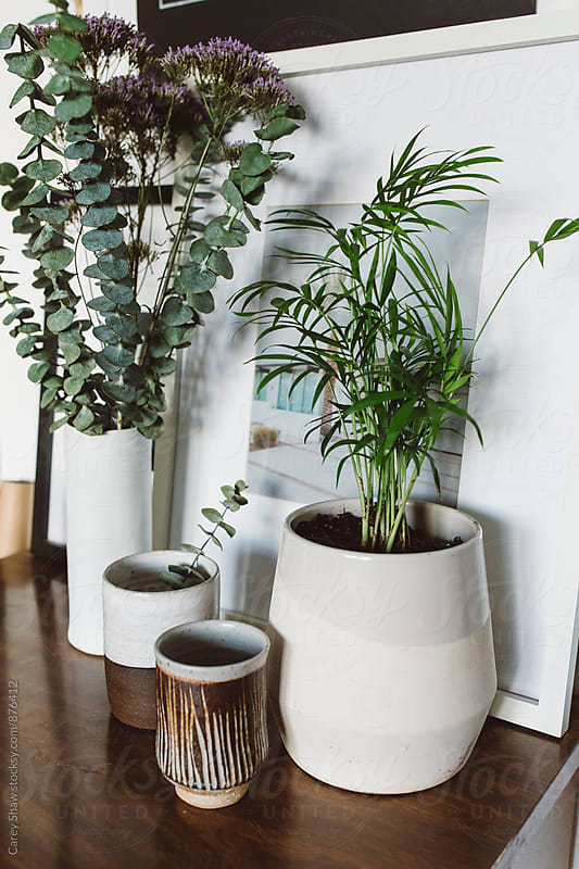 Modern decor collection of vases and pottery by Carey Shaw for Stocksy United
