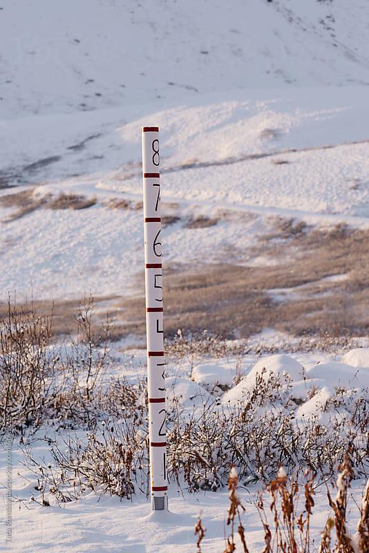 Less than a foot of snow measurement pole in Alaska by Tara Romasanta for Stocksy United