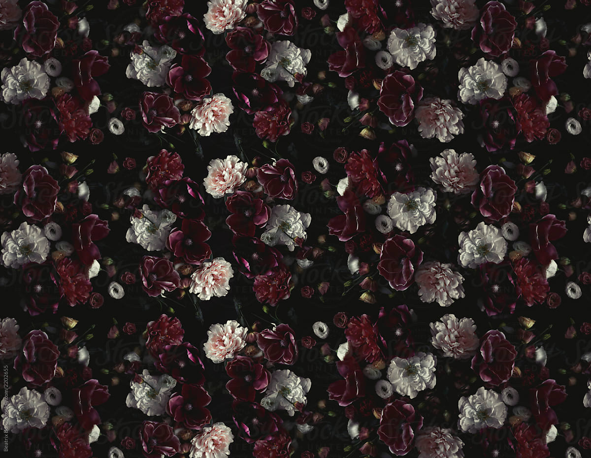 Red Dahlia Rose Floral Bouqet Wallpaper Mural Wallmur