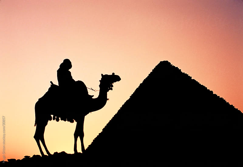 Camel, rider and pyramid silhouetted at sunset. Pyramids. Egypt by Hugh Sitton for Stocksy United