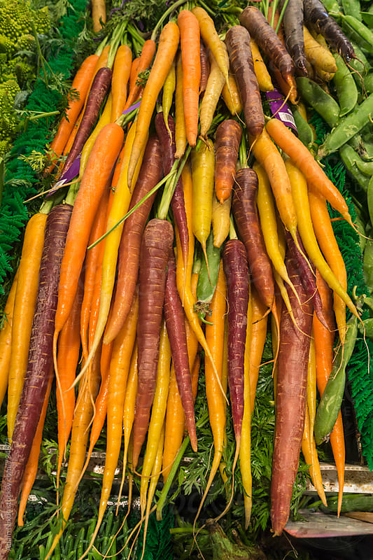 Multi colored organic carrots at a farmers market by Adam Nixon for Stocksy United