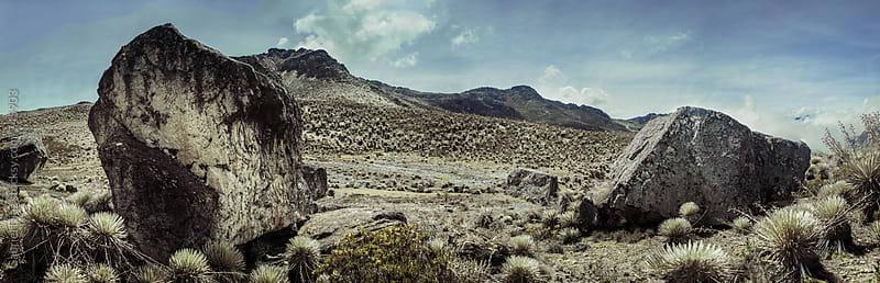 view of Trekking path and rocks - Venezuela by Gabriel Diaz for Stocksy United