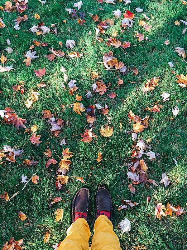 Feet Standing on a Leaf-Covered Lawn by Holly Clark for Stocksy United