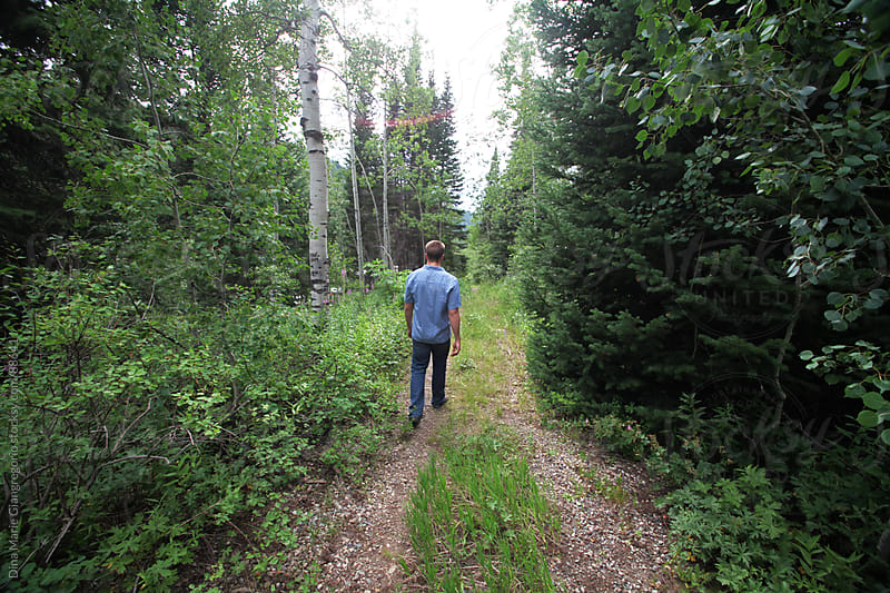 Wide angle view of man walking down a forest path by Dina Giangregorio for Stocksy United