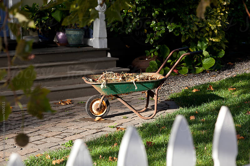 Wheelbarrow in front yard by Tanya Constantine for Stocksy United