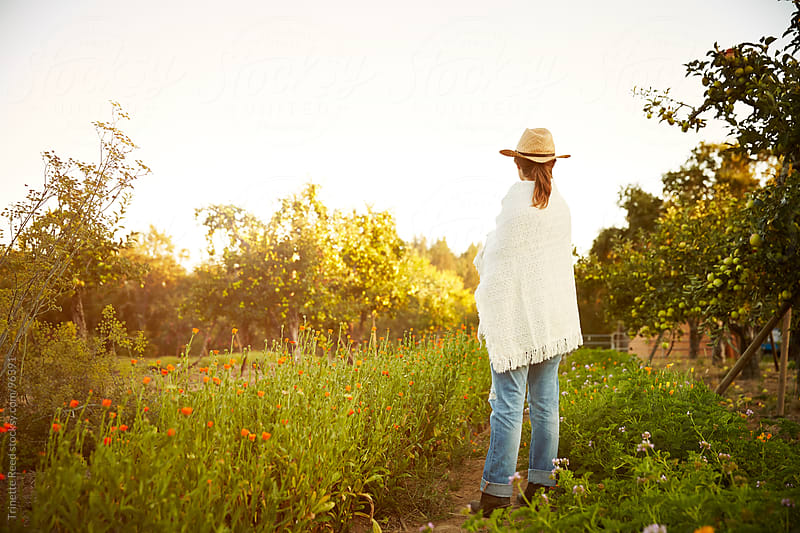 Woman farmer looking at view on farm at sunset in California  by Trinette Reed for Stocksy United