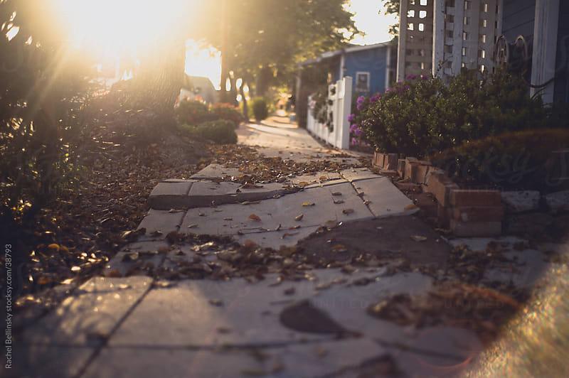 A cracked sidewalk leading into the sun in a neighborhood by Rachel Bellinsky for Stocksy United