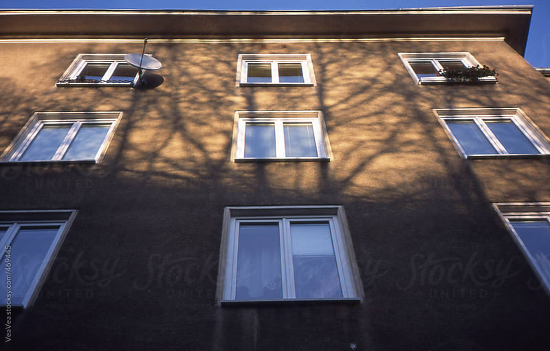 Building with tree shadows over  by VeaVea for Stocksy United