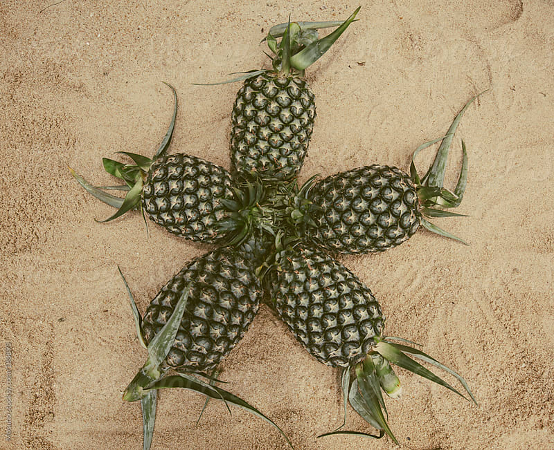 Pineapples in Sand by Mosuno for Stocksy United