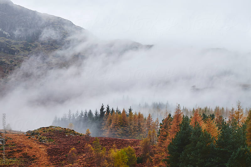 Rain clouds sweeping through the mountains near Blea Tarn. Cumbria, UK. by Liam Grant for Stocksy United