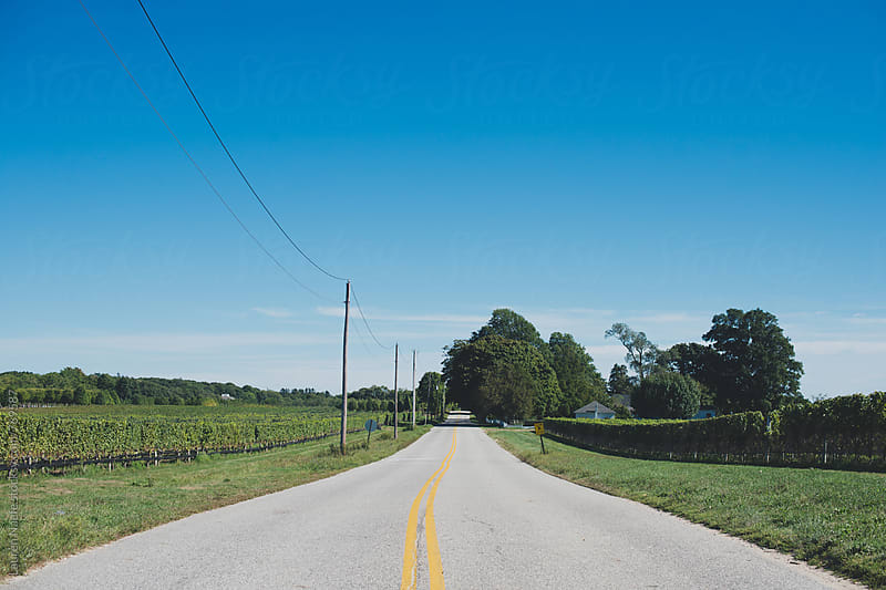 Country road by Lauren Naefe for Stocksy United