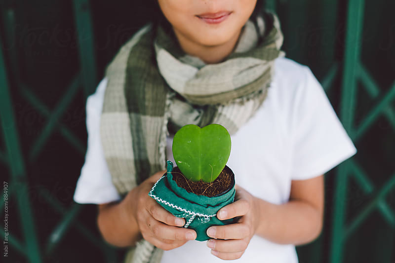 A boy holding a green plant pot in the heart shape for valentine's day by Nabi Tang for Stocksy United