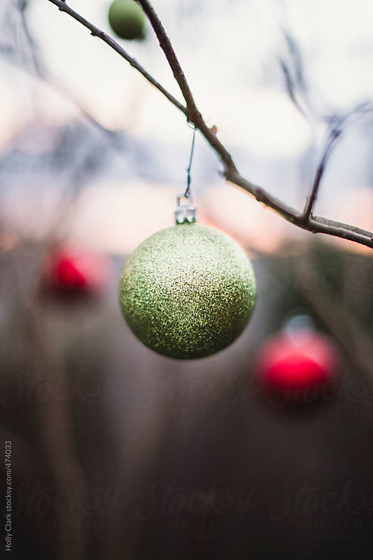 A green Christmas ornament hangs on a branch outside. by Holly Clark for Stocksy United