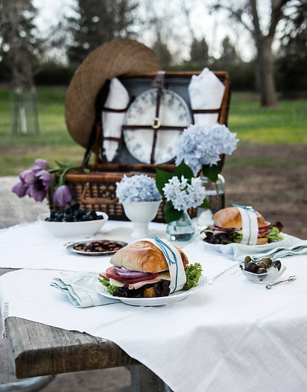 Romantic vintage style picnic in a park with a vintage blue and white theme and picnic basket. by Rhonda Adkins for Stocksy United