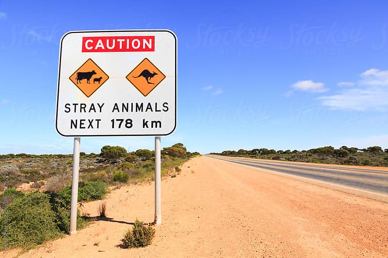 Warning sign on the Nullarbor Plain. Western Australia. by John White for Stocksy United