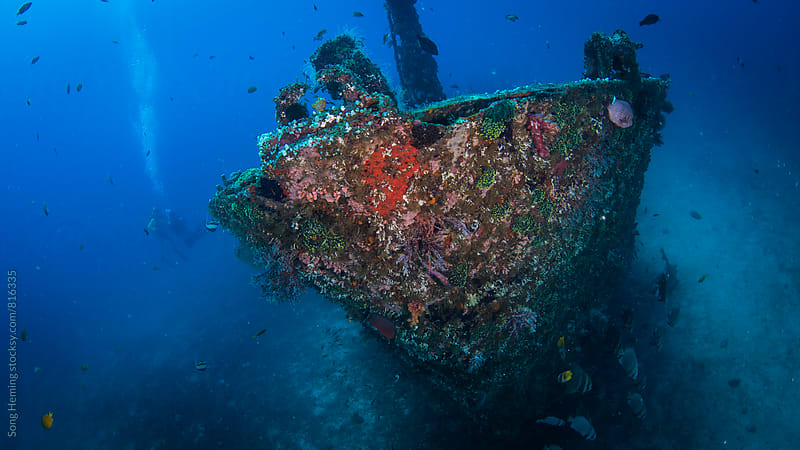 wreck by Song Heming for Stocksy United