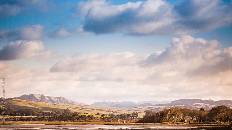 Point Reyes Landscape by Thomas Hawk for Stocksy United