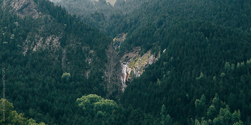 part of mountains with forest by Javier Pardina for Stocksy United