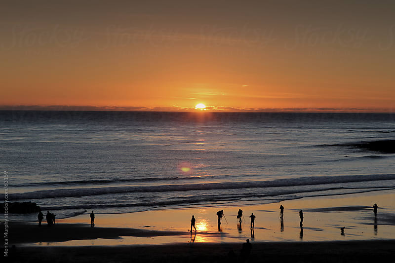 Small silhouettes of photographers on the beach at sunset  by Monica Murphy for Stocksy United