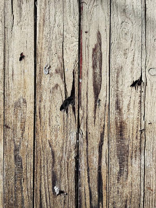 Wooden texture by Maja Topcagic for Stocksy United