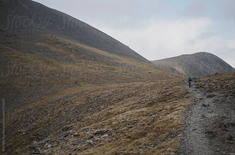 Mountain Paths by Neil Warburton for Stocksy United