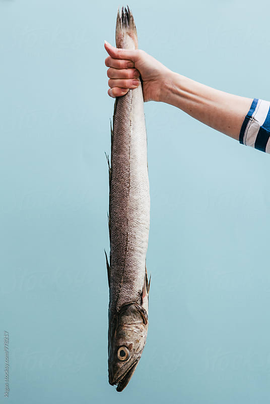 Woman fishmonger holding a large Hake by kkgas for Stocksy United