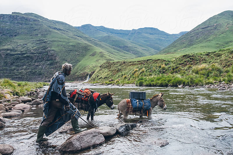 Basotho herdsman guiding his pack donkeys across a river in Lesotho by Micky Wiswedel for Stocksy United
