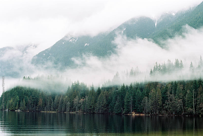 Foggy mountain scene by Daniel Kim Photography for Stocksy United