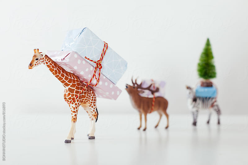 Toy animals carrying Christmas gifts on white. by BONNINSTUDIO for Stocksy United