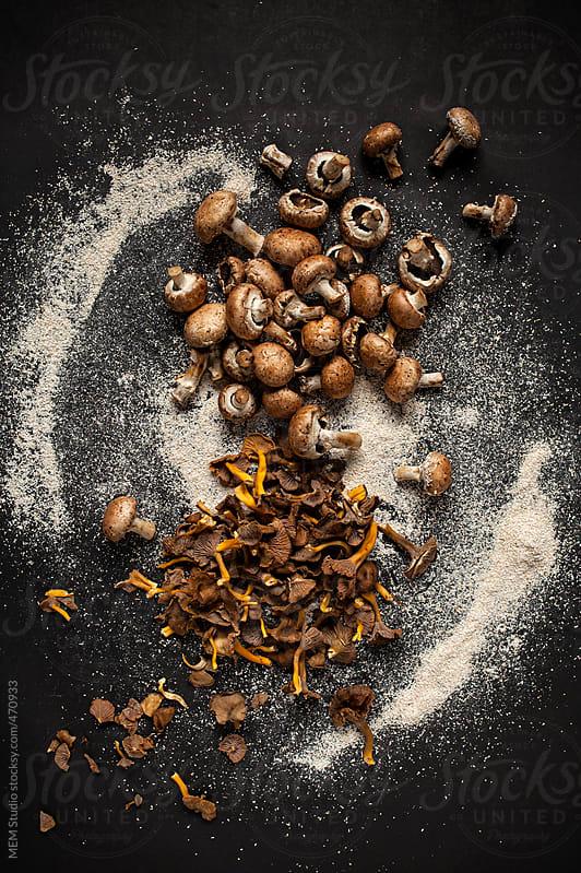 mushrooms by MEM Studio for Stocksy United