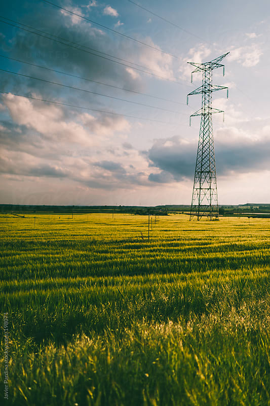 electric line power on the fields by Javier Pardina for Stocksy United