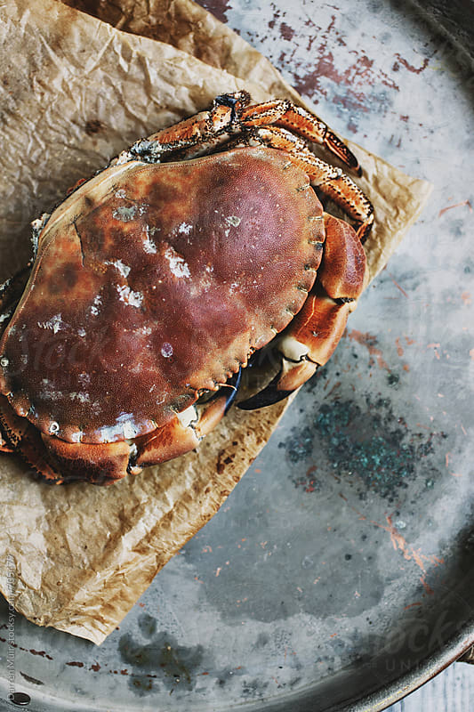 Whole cooked crab on brown paper on a metal tray. by Darren Muir for Stocksy United