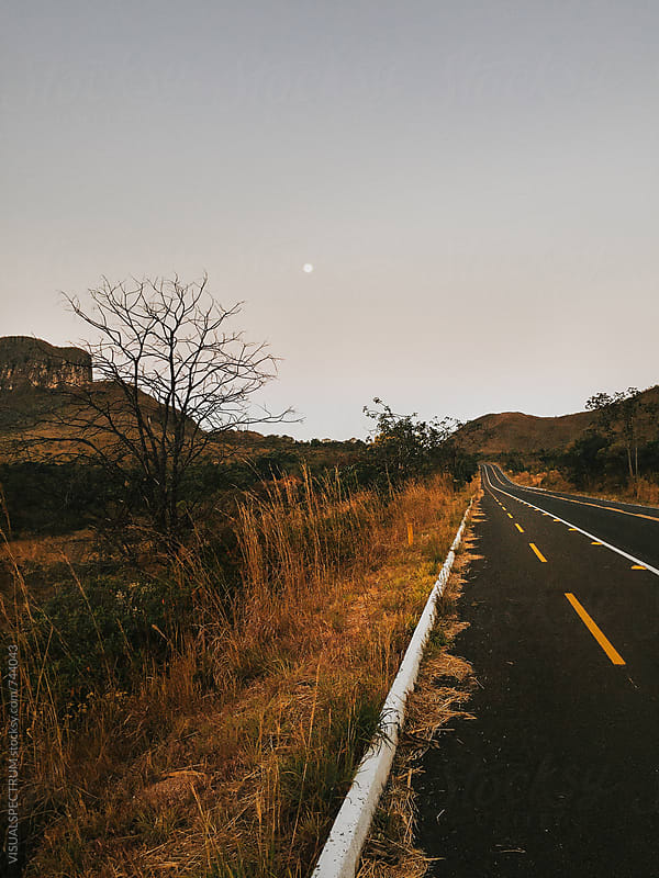 Full Moon Over Brazilian National Park (Chapada dos Veadeiros) by VISUALSPECTRUM for Stocksy United