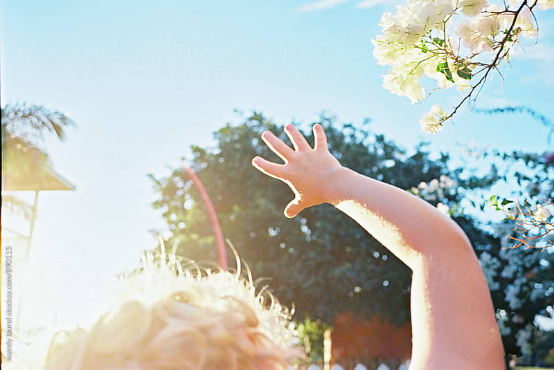 little blonde boy hand reaching up toward sun by wendy laurel for Stocksy United