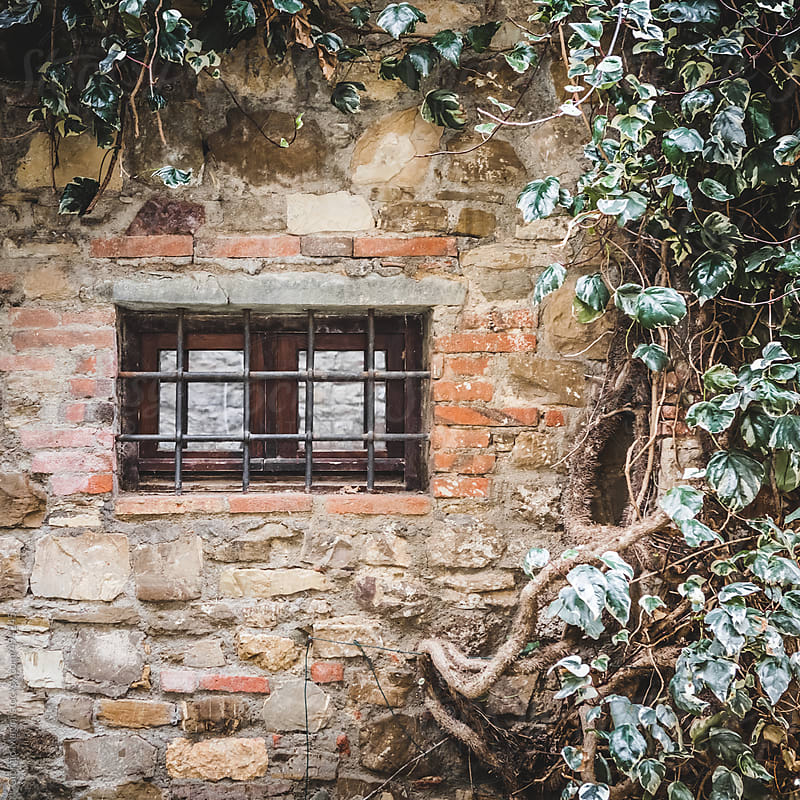 Old Window with Creeper in Ancient Village by Giorgio Magini for Stocksy United