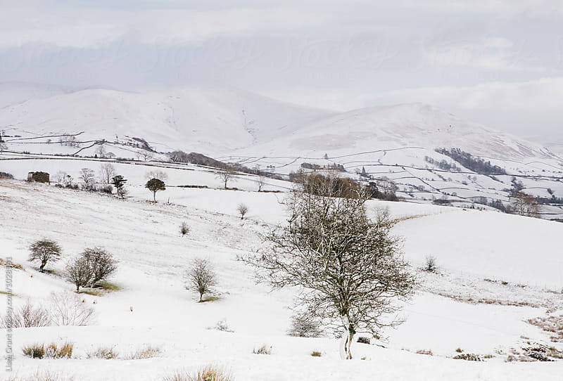 Snow covered mountains and farmland. Cumbria, UK. by Liam Grant for Stocksy United