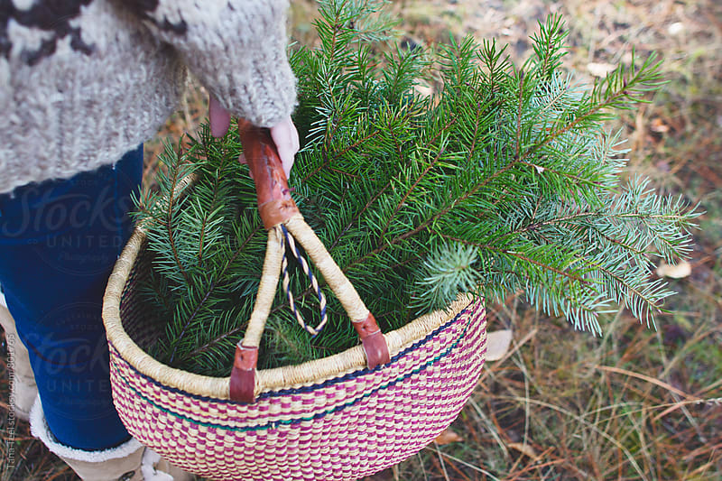 woven basket full of cut pine branches by Tana Teel for Stocksy United