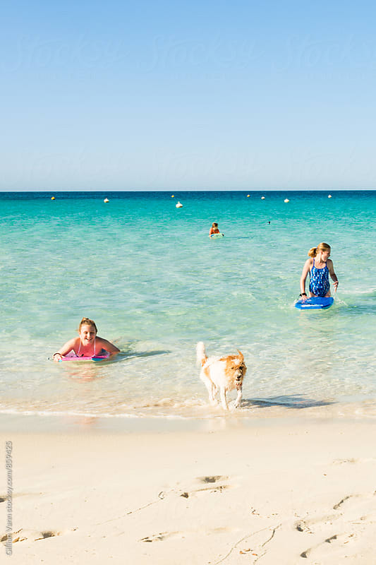 fun times with the dog and kids at the beach by Gillian Vann for Stocksy United