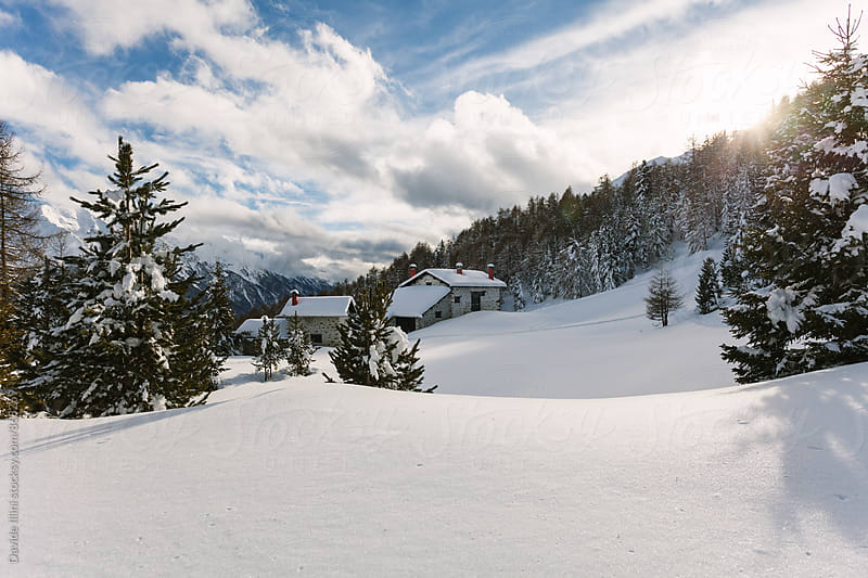 Typical Winter Landscape in the Alps by Davide Illini for Stocksy United