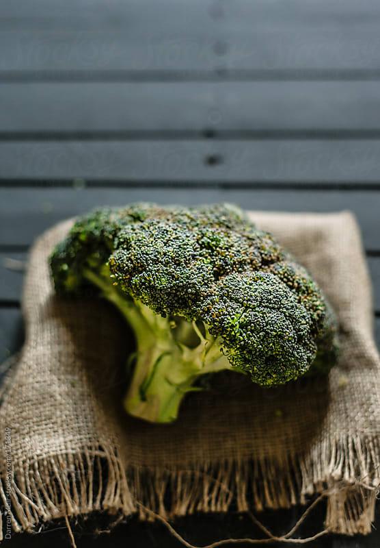 Broccoli.  by Darren Muir for Stocksy United