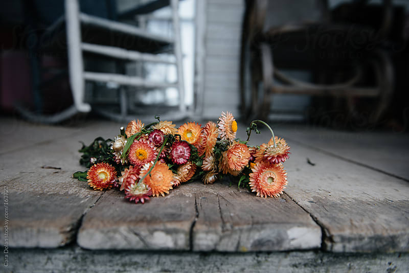 Bouquet of dried flowers  by Cara Dolan for Stocksy United