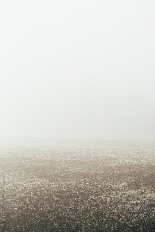 Cultivated field with frost by michela ravasio for Stocksy United