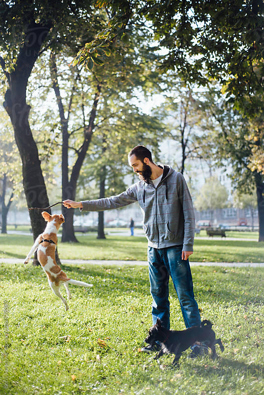 Man playing with his dog in the park by Boris Jovanovic for Stocksy United