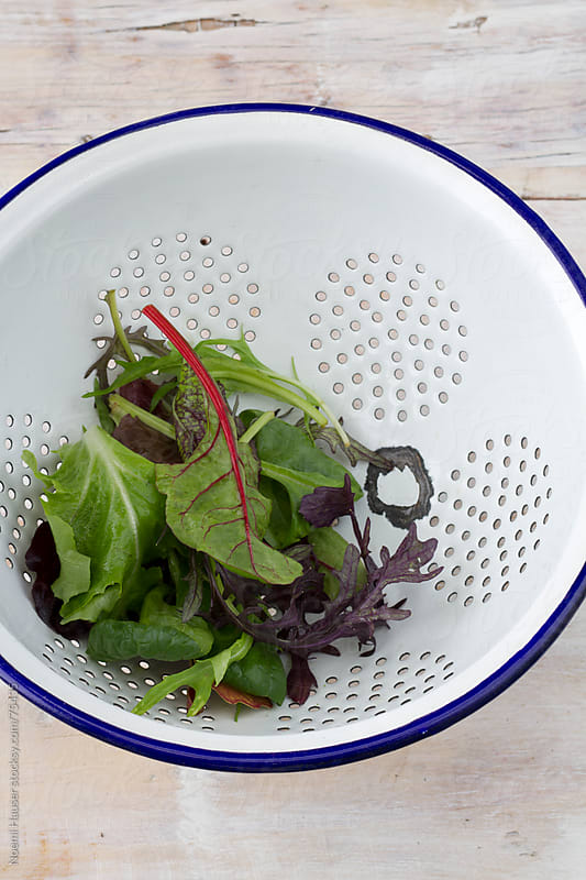 Salad leaf mixture in white colander by Noemi Hauser for Stocksy United
